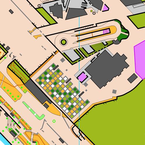 Orientierungslaufkarte